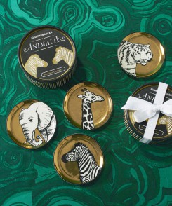 Safari Coaster Set
