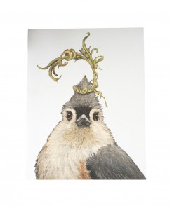Tufted Titmouse Card