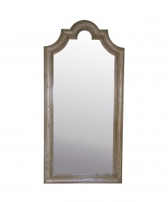 Abbott Mirror