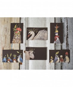 Party Birds Enclosure Cards