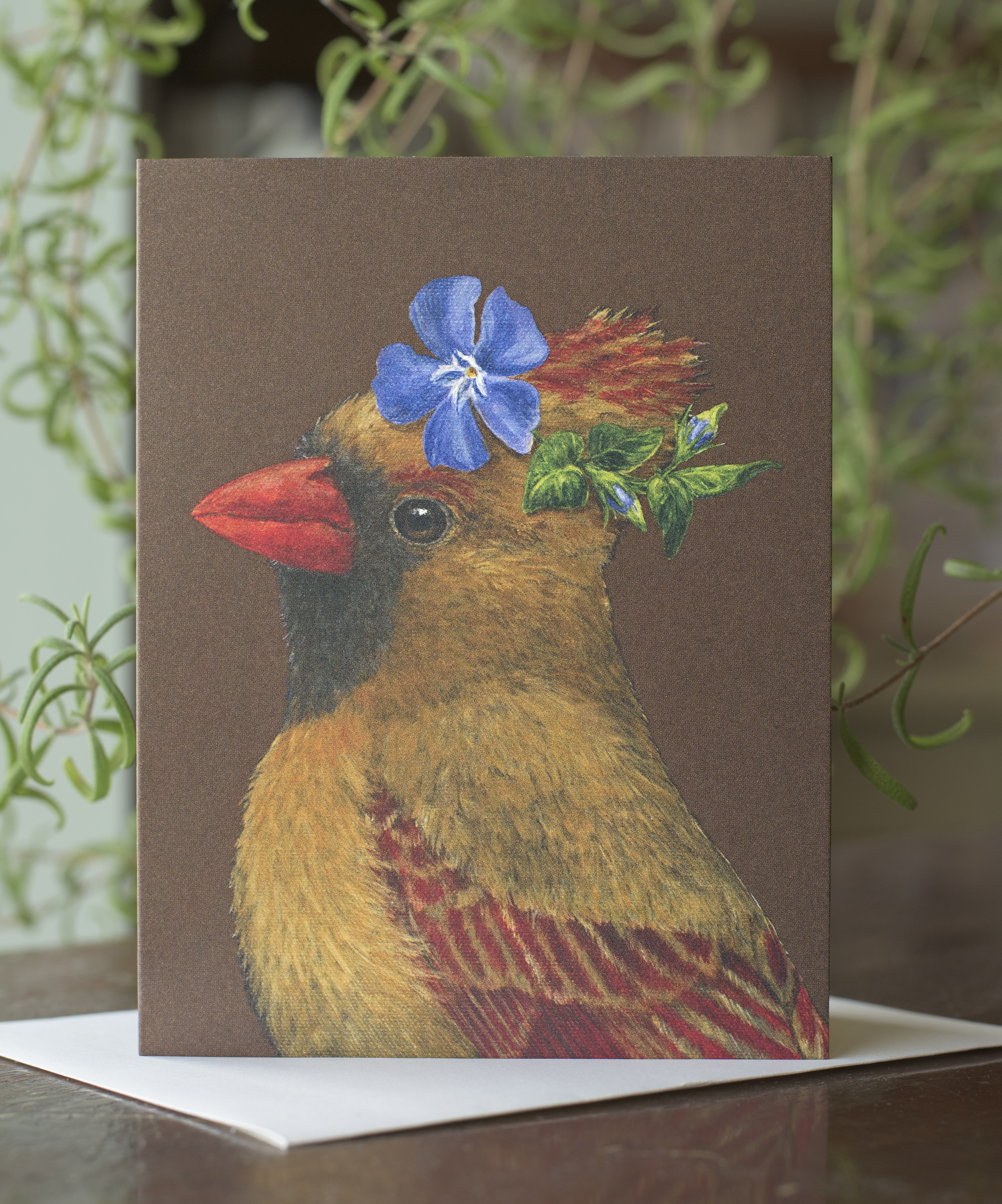 Party Birds Chocolate Card Box Set