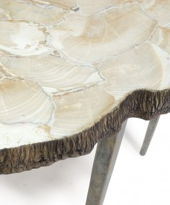 Fossilized Clam Console