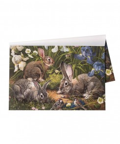 Garden Rabbit Paper Placemats