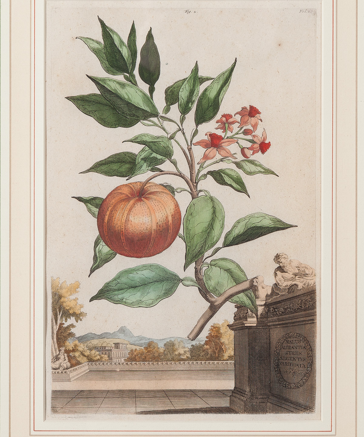 Munting Fruit Prints, Set of Two