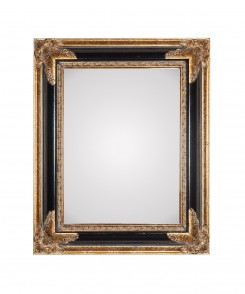 Vintage Gilt and Ebony Mirror